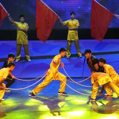 沈阳体育学院武术学院参加2016沈阳市群众文化优秀节目展演